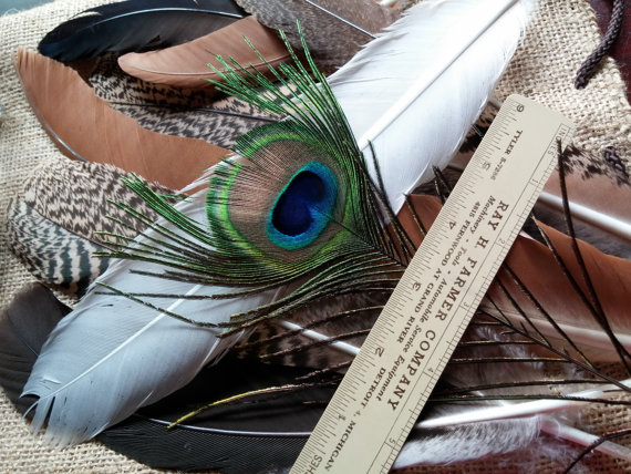 Mariage - Peacock Smudge Feathers,9 Feathers,Four 14in length,Three 5in,One 9in,One All Seeing Eye,Naturally Shed,Craft feathers,Center pieces,Bouquet