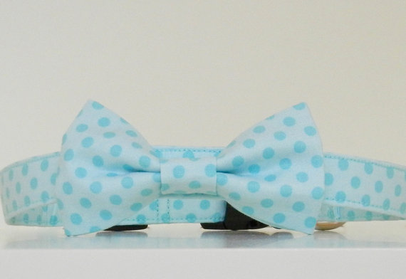 Свадьба - Two Tone Aqua Blue Polka Dot Bow Tie Dog Collar Easter Collar Wedding Accessories Made to Order