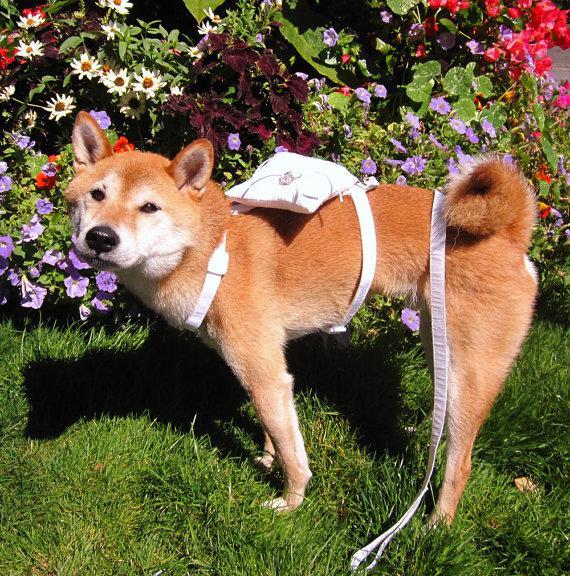 Hochzeit - Ring Bearer Dog Harness  - Ring Bearer Pillow - Dog Wedding Harness