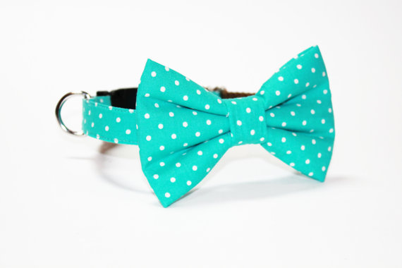 Düğün - Bow Tie Dog Collar- Teal Polka Dot- Wedding Dog Bow Tie Collar