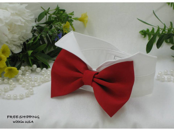 Свадьба - Red Satin Oversized Bow on WingtipTuxedo Collar~Dog Wedding Attire~Dog Tuxedo~Dog Ring Bearer~Dog Best Man~Pets~Free Shipping Within USA~