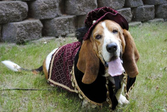 Свадьба - Custom Renaissance Tudor Royal Ringbearer Dog Pet Costume outfit for S-M pet