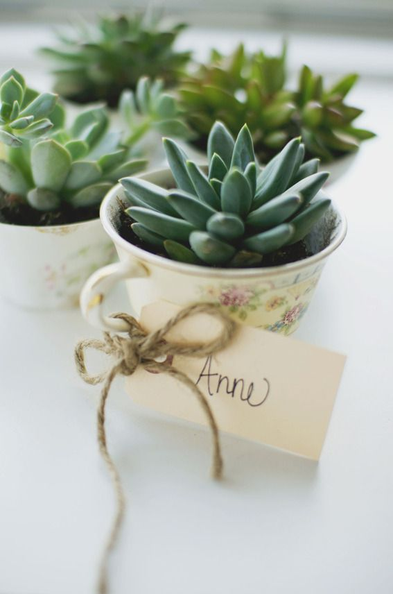 Inspired By Spring Easy Diy Tea Cup Planter Party Favors 2322314
