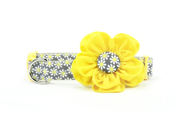 Свадьба - Daisy Dog Flower Collar Grey Yellow Girl Dog Collar Flower