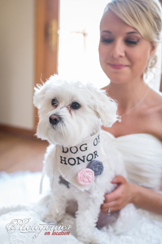 Свадьба - Ivory Dog of Honor Girl Collar with Flowers Bandana Rustic Burlap Wedding Photo Prop