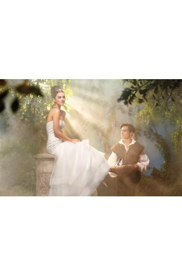 Alfred Angelo Wedding Dresses Style 216 Cinderella 2323464 Weddbook