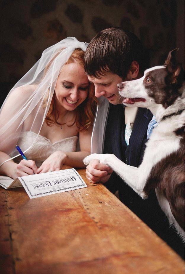 Свадьба - Amor