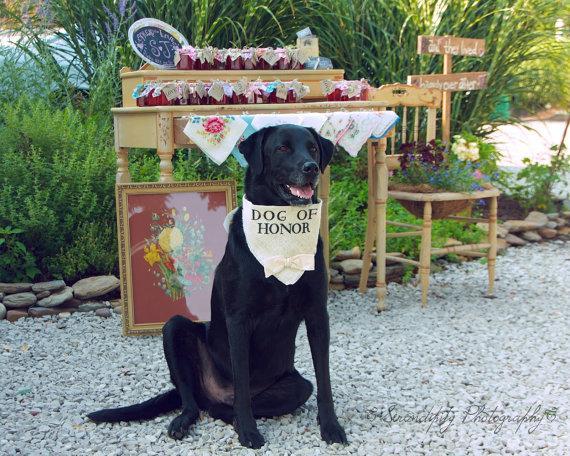 Свадьба - Dog Bandana Dog of Honor Ivory Wedding Collar Boy Bowtie