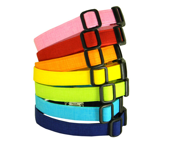 زفاف - Solid Dog Collar/ Red/ Pink/ Blue/ Yellow: Rainbow Solids