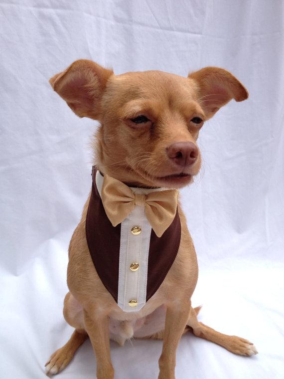 Свадьба - Custom Pet Tuxedo Bandana
