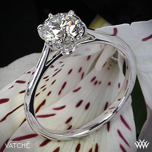 زفاف - Dream Wedding