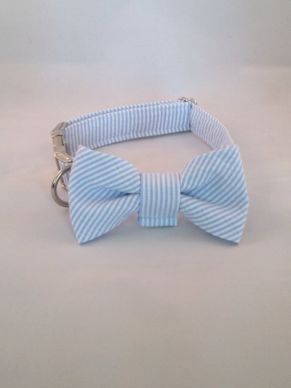Свадьба - Preppy Blue Seersucker Bow Tie Dog Collar, Baby Blue Dog Bowtie Collar, Striped Dog Bow Tie Collar, Blue Wedding Dog Bow Tie Collar