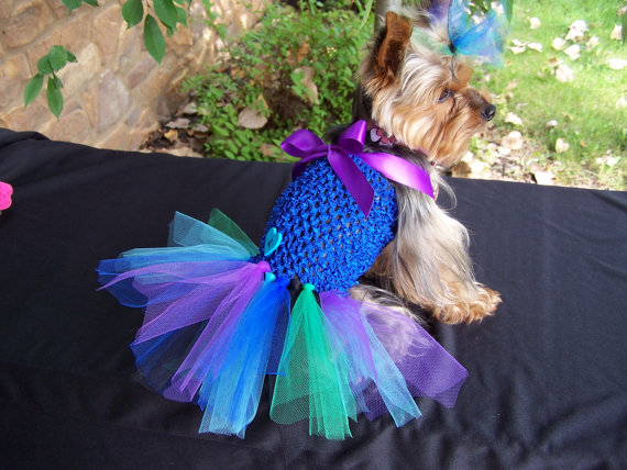 Свадьба - Dog Dress in Peacock colors Hair bow included LARGE size