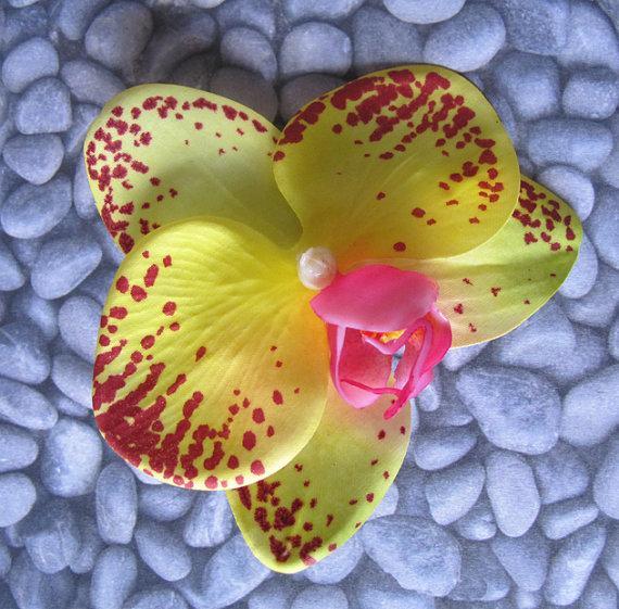Mariage - Hawaiian Yellow - Wine Orchid  hair Flower clip