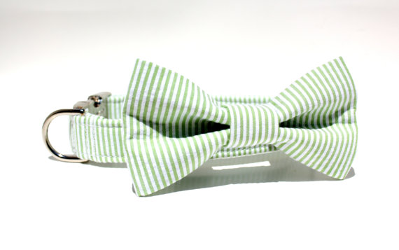 Свадьба - Green and White Seersucker Dog Collar and Bow Tie Set / Wedding Dog Collar and Bow Tie Set / Made to Order