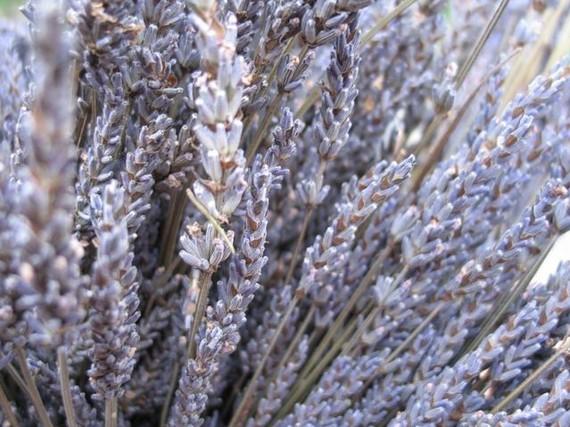 Свадьба - Organic  Dried Lavender 5 bunches
