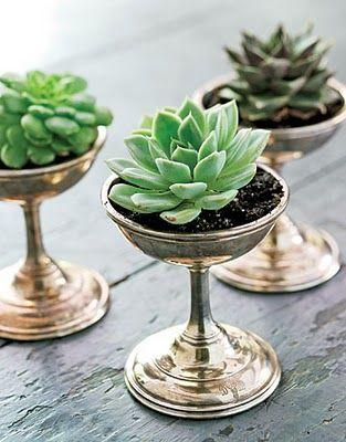 Hochzeit - 22 Table Decorations And Centerpiece Ideas With Succulents