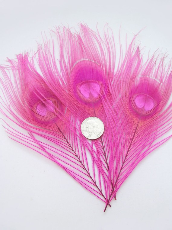 Wedding - CANDY PINK Peacock Feather Eyes  (12 Pieces) Pristine D.I.Y. feathers for boutonnieres, earrings, wedding bouquets and millinery