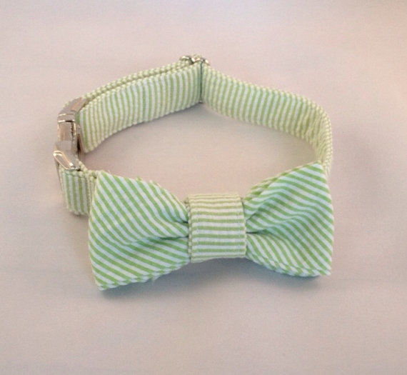 Свадьба - Preppy Green Seersucker Bow Tie Dog Collar, Preppy Dog Bowtie Collar, Striped Dog Bow Tie Collar, Green Dog Bow Tie Collar, Wedding Collar