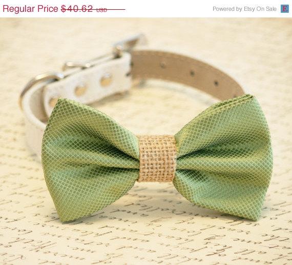 Wedding - Green and burlap Dog Bow Tie, Burlap Wedding, Country rustic wedding, Pet Accessory, Dog Lovers, Burlap Pet wedding accessory
