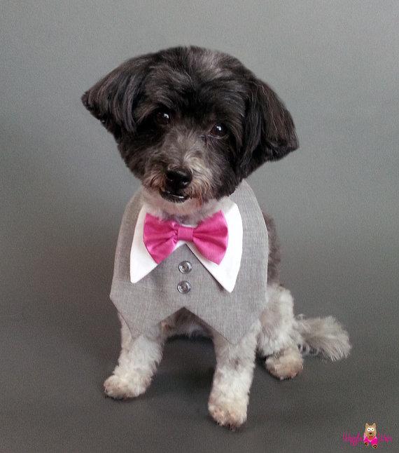 Свадьба - Heather Gray Dog Wedding Tuxedo With Satin or Cotton Bow Tie