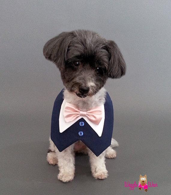 Свадьба - Navy Dog Wedding Tuxedo