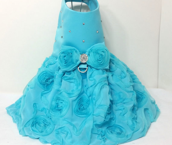 Свадьба - Turquoise Rose Dog Harness Dress XX Small Dog Dress to 4X Large Dog Dresses Dog Harnness Dress Dog Clothes Designer Dog Dress