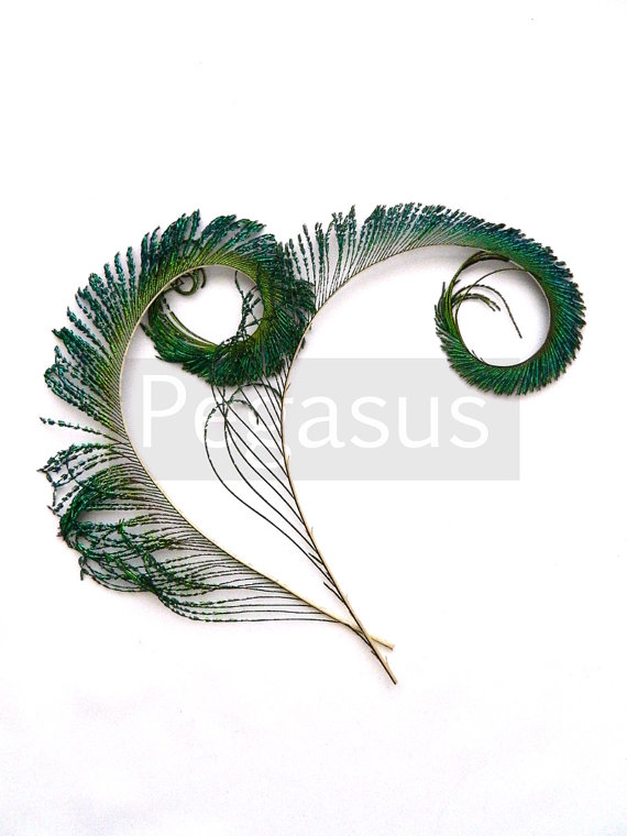 Wedding - NATURAL Peacock Curled Sword Tail Feathers (4 Feathers)(14 color options) for wedding bouquets, invitations, center pieces and millinery