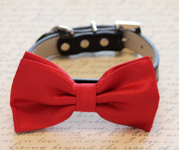 Свадьба - Red dog Bow tie attached to Black Leather, Pet Wedding accessory, Love Red, Wedding idea