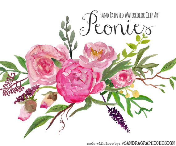 "Wedding - Floral clip art: ""PEONY clip art""  hand painted watercolor clip art, digital flowers, peony flowers 70 PNG  files (5196)"