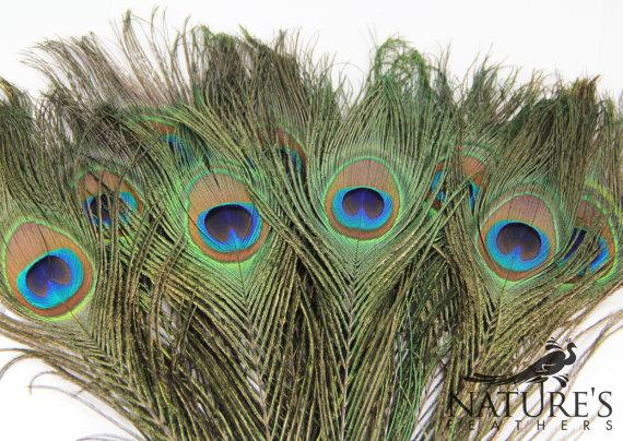 Mariage - 25pcs HQ Natural Peacock Feathers about 10-13 Inches