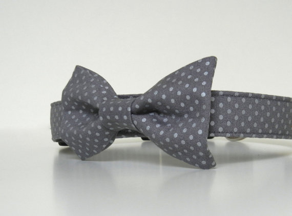 Свадьба - Gray Metallic Silver Polka Dot Bow Tie Dog Collar Wedding Accessories Made to Order