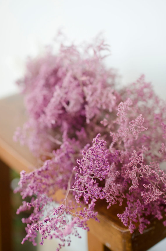 Bunch Of Preserved Pink Misty Pink Caspia Pink Wedding Spring