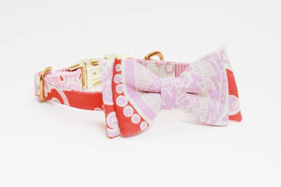 Свадьба - Adjustable Paisley Girl Dog Collar with Bow- Cream, Orange, and Pink Dog Collar with Gold Tone Hardware