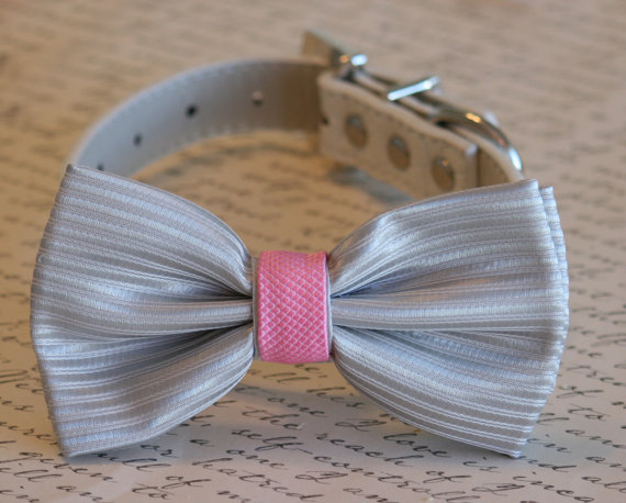 زفاف - Pink and Gray wedding, Gray Dog Bow Tie, Pet Wedding accessory, Wedding idea, Dog Bow tie, Pink and Gray wedding accessory, Love pink