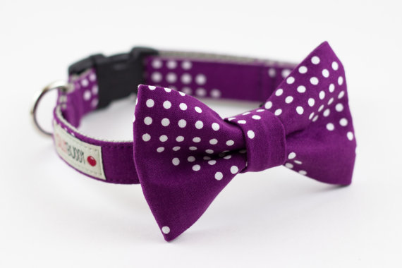 "Свадьба - Ready to Ship 12"" to 14"" - Purple Dots Dog Bow Tie Collar"