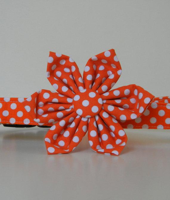 Свадьба - Orange Polka Dot Dog Flower Collar Wedding Accessories Halloween Collar Made to Order