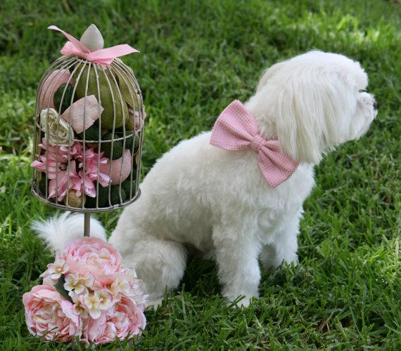 زفاف - Pink Dog Bow Tie, Pet Accessory, Dog Birthday, Pet wedding accessories, Pink Lovers