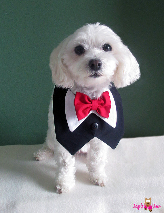Black Dog Wedding Tuxedo With Bow Tie - Your Choice Of Bow Tie ...
