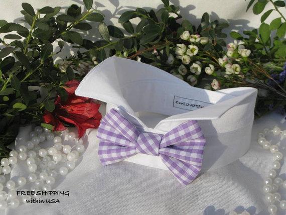 زفاف - Purple&White Gingham Bow on Wingtip Tuxedo Dog Collar~Wedding Dog Collar~Dog Tuxedo~Dog Best Man~Dog Ring Bearer~Free Shipping Within USA