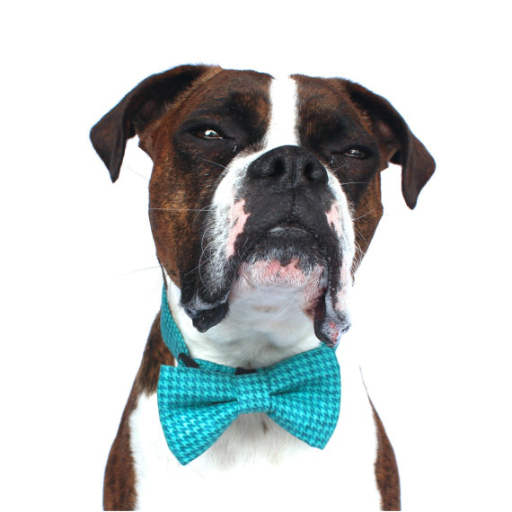 Mariage - Dog Bow Tie, Blue turquoise, Houndstooth Dog Bow