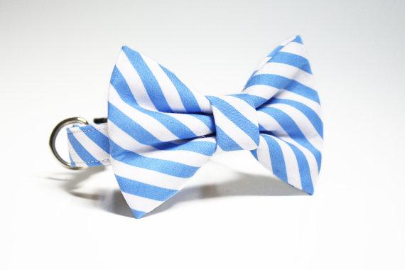 زفاف - Dog Collar- Striped Bow Tie Dog Collar- Wedding Dog Collar- Preppy stripes- Nautical Dog Collar
