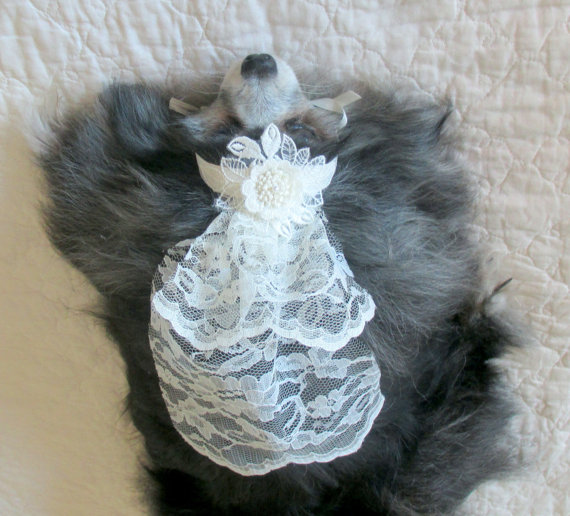 Свадьба - Pet Wedding Veil Made to Order for Small Dogs and Cats - Ivory Lace w/Floral Trim