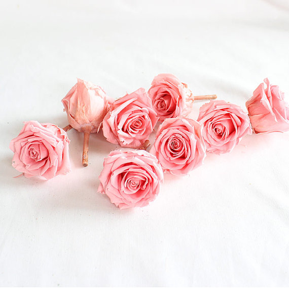 Mariage - Preserved Natural lovely Princess Roses, Preserved Pink Roses, Roses for Bouquet, Rose Bouquet, Preserved Rose Bouquet  Simply Beautiful !