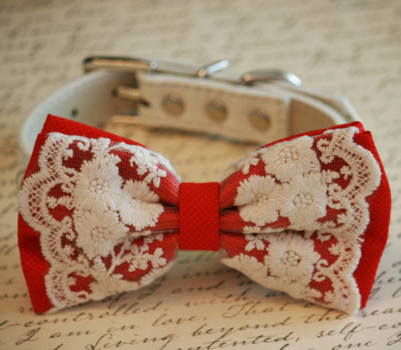 Wedding - Red Dog Bow Tie,Lace Bow tie, Vintage Wedding, Red Pet accessory, Love Red, Dog Lovers, Cute, Chic, Proposal Idea