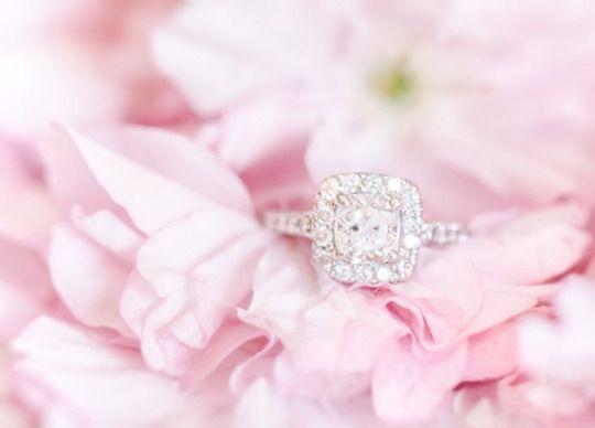 Свадьба - The Rose Garden