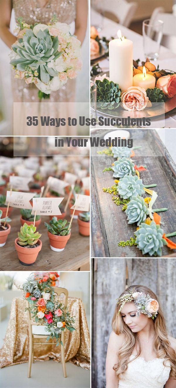 Wedding - 35 Succulent Wedding Ideas For Your Big Day