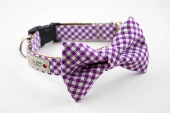 Свадьба - Purple Gingham Dog Bow Tie Collar