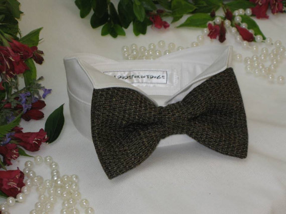 Свадьба - Rustic Brown Tweed Oversized Bow Tie Wingtip Tuxedo Dog Collar ~ Custom Made~Dog Wedding Collar~Dog Tuxedo~Best Man~Free Shipping Within USA