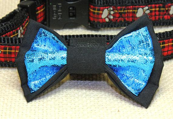 Свадьба - Medium Size Black and Metallic Blue Dog Bow Tie. Black Cotton and Sapphire Blue Lame Fabric Pet Accessories. Attaches Using Velcro to Collar